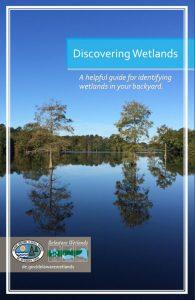 Discovering Wetlands