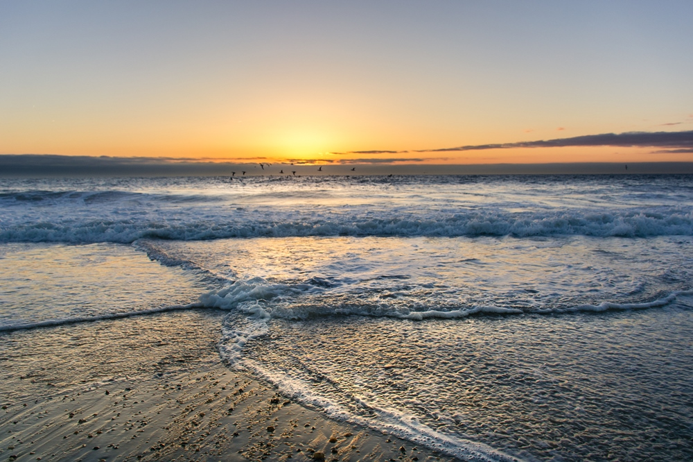 Cape Henlopen State Park beach at sunrise
