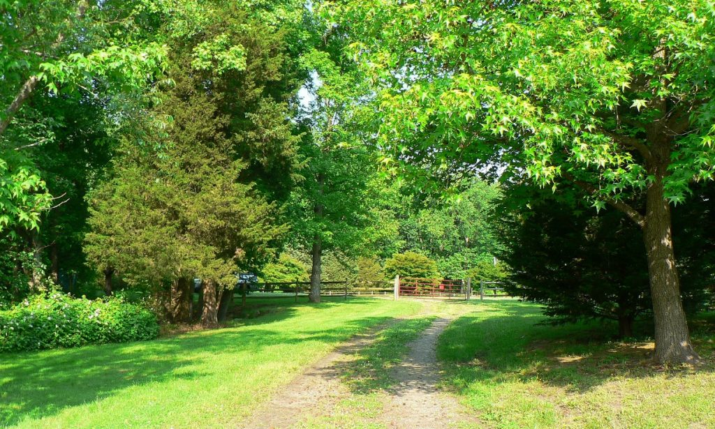 Blackbird Creek Reserve in Sunshine