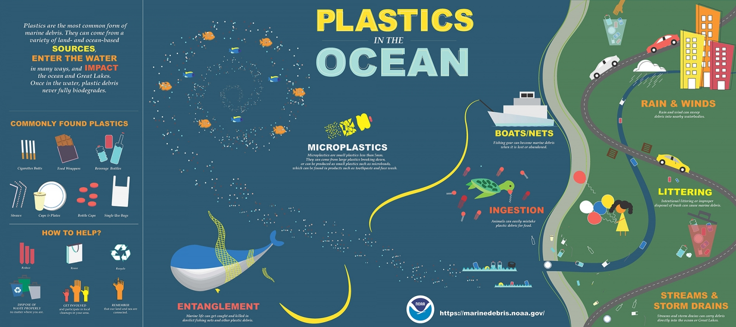 Plastic in the Ocean Infographic