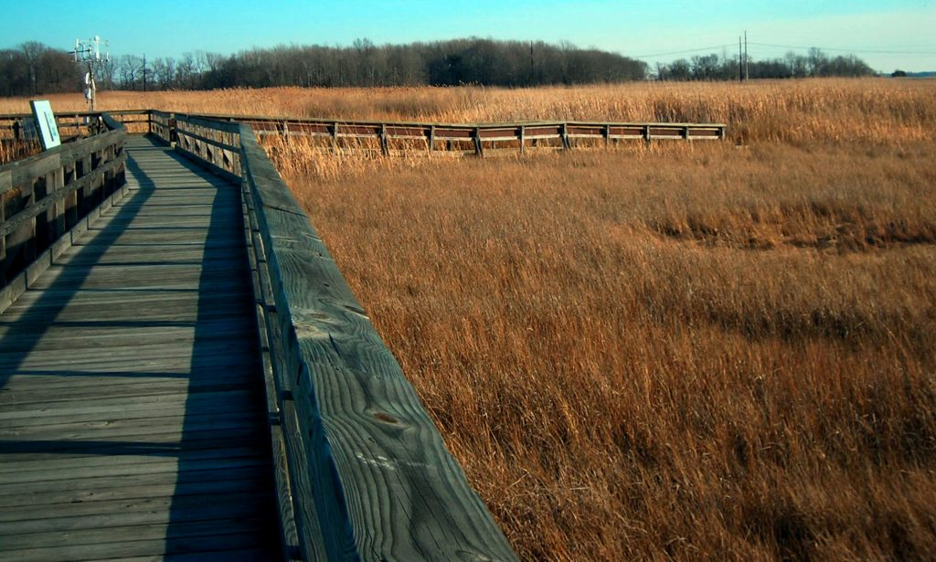 St. Jones Boardwalk