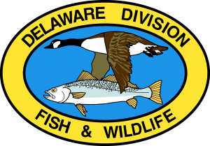 Division of Fish & Wildlife