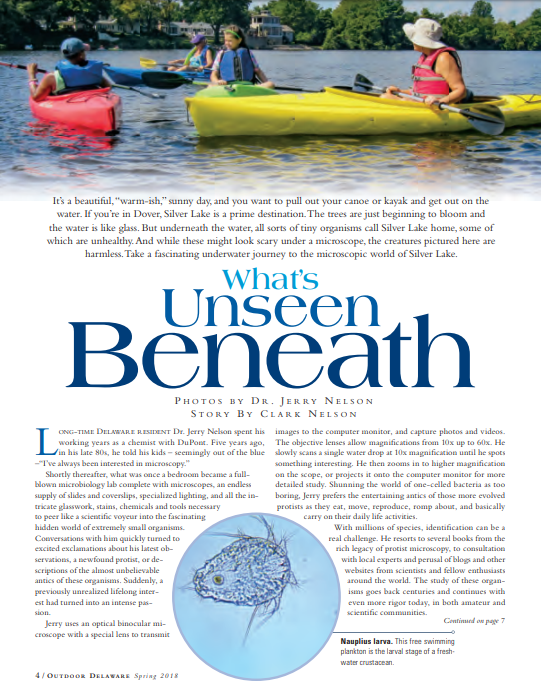 What's Unseen Beneath