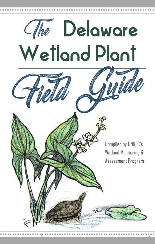 Wetland Plant Field Guide