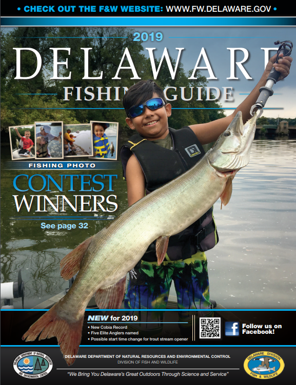 Delaware Fishing Report - DNREC Alpha