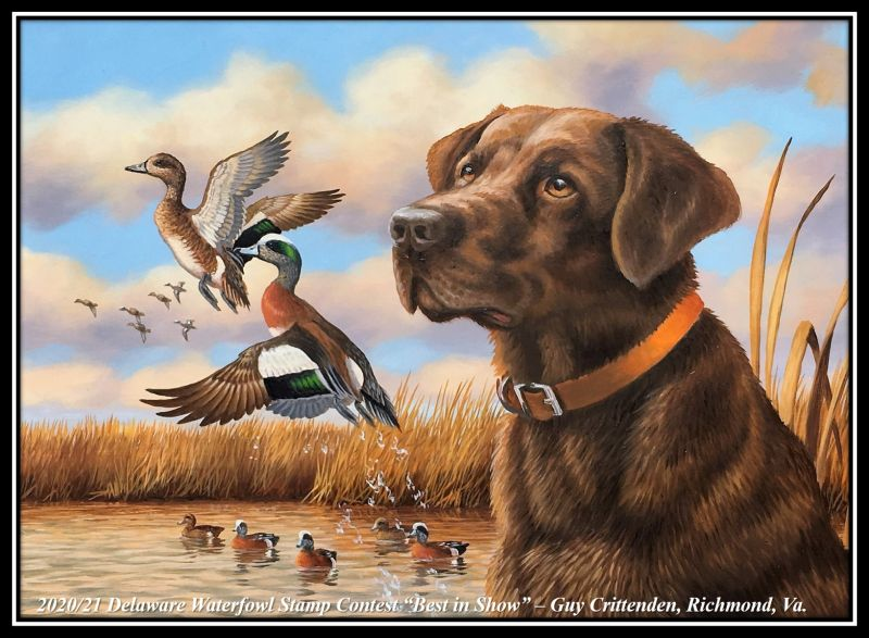 2020/21 Delaware State Waterfowl Stamp – Best in Show