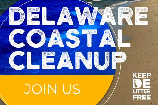 The Delaware Coastal Cleanup