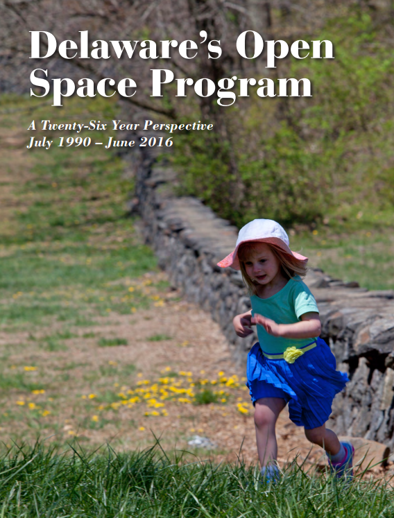 Open Space Report Cover