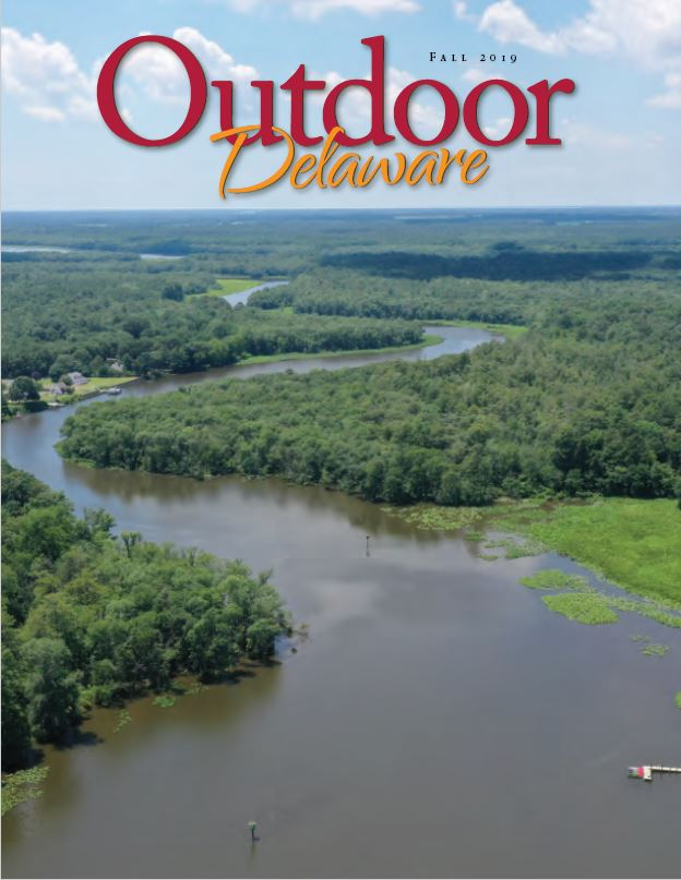 Fall 2019 Outdoor Delaware Cover