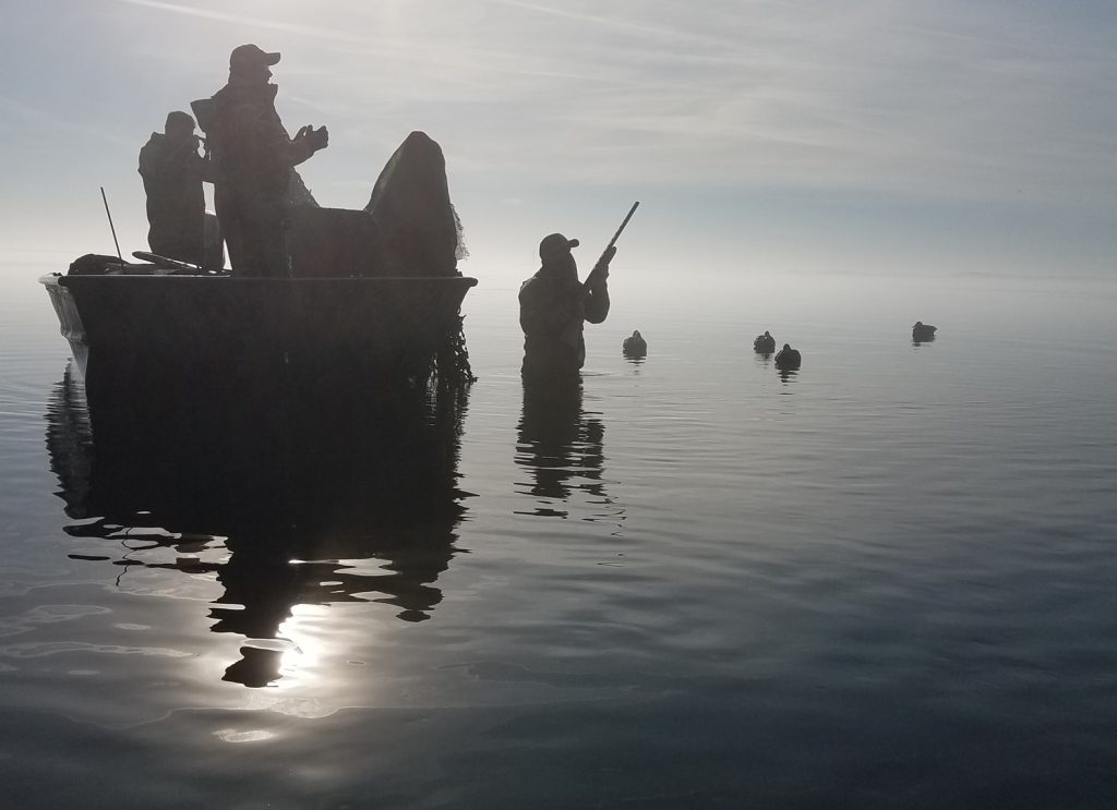 Hunting on a Bay