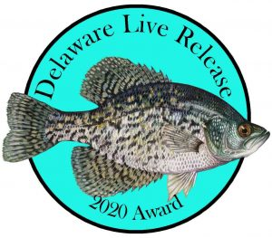 Live Release Freshwater Pin