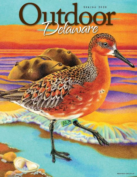 Spring 2020 Outdoor Delaware Cover