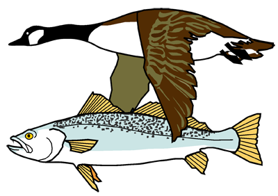 Goose and Fish