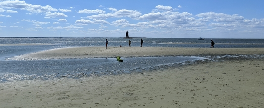 http://Join%20Delaware's%20virtual%20coastal%20cleanup%20campaign