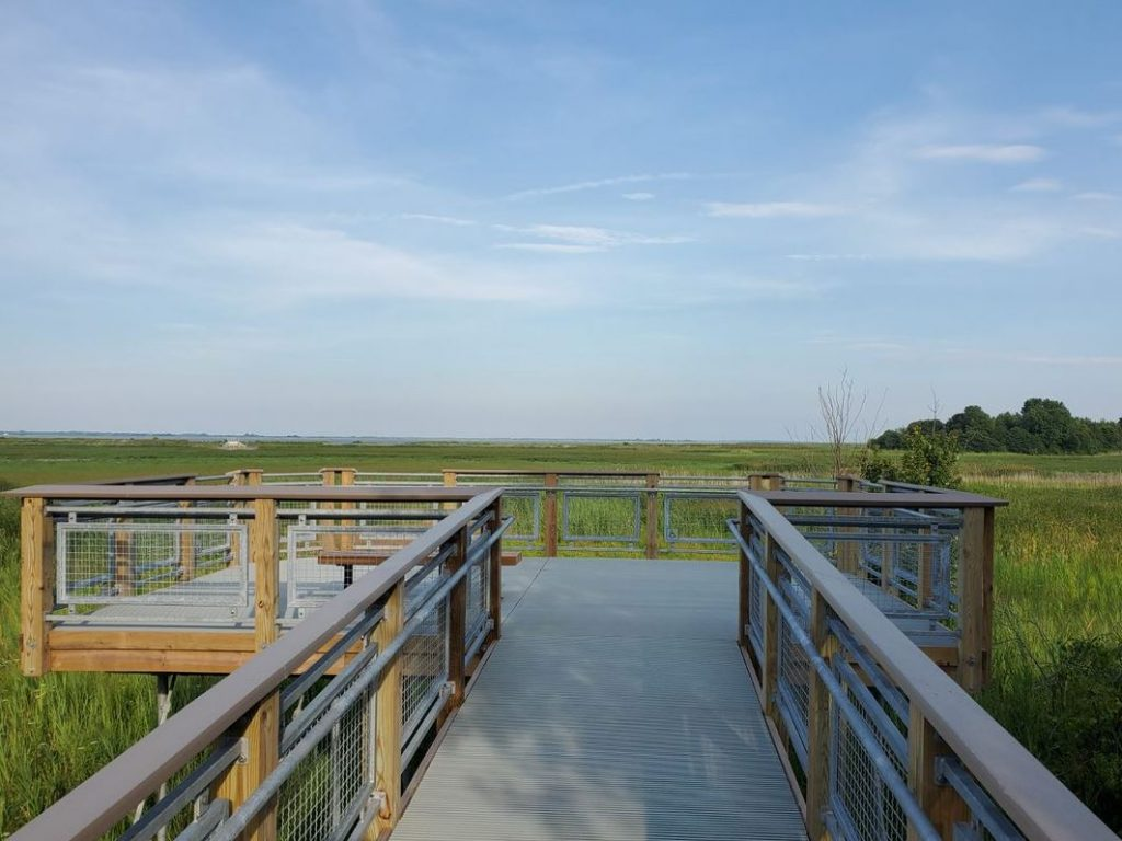 Port Penn Viewing Deck