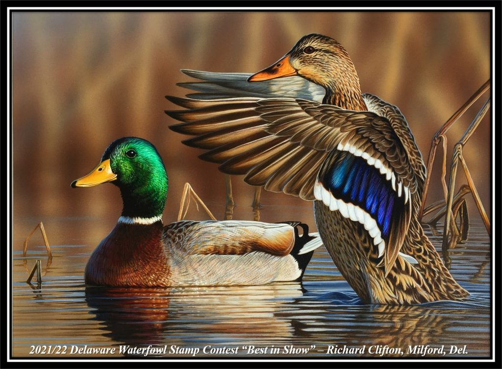 2021/22 Waterfowl Stamp Contest Best in Show
