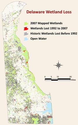 Delaware Wetlands Loss Map
