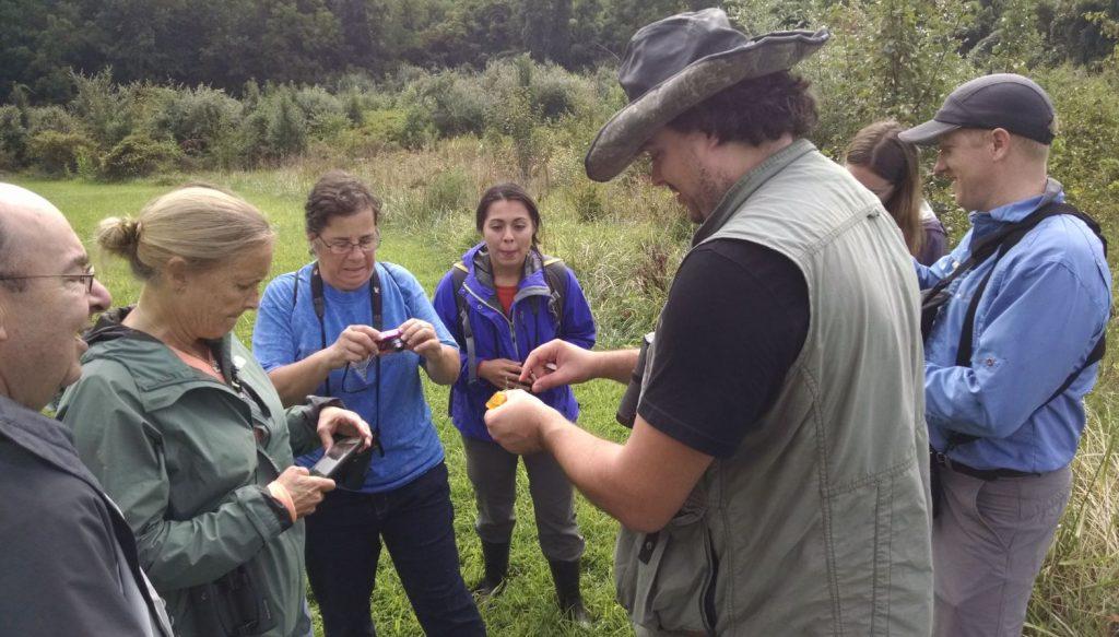 Bioblitz participants examining a plant with a naturalist